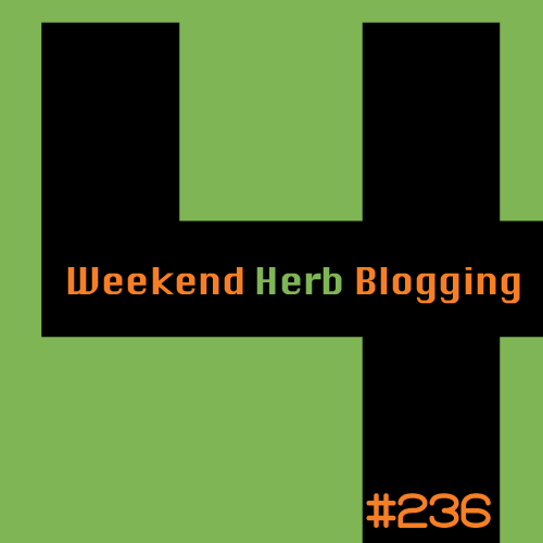 Weekend Herb Blogging #236 logo