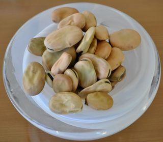 dry fava beans