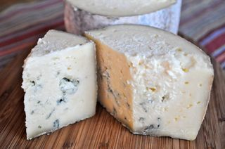 homemade Fourme d'Ambert