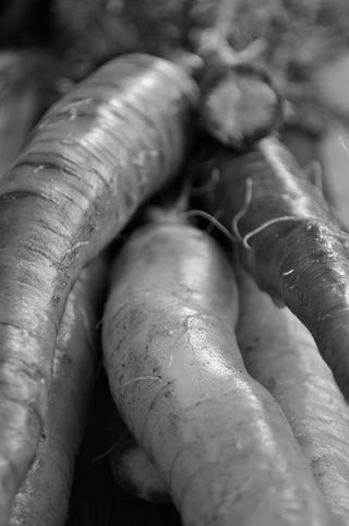 black and white rainbow carrots