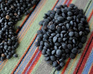 lenticchie nere ennesi and black beluga lentils