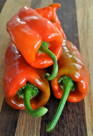sweet chili peppers
