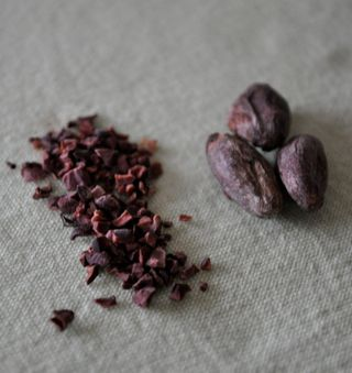 cacao beans and nibs