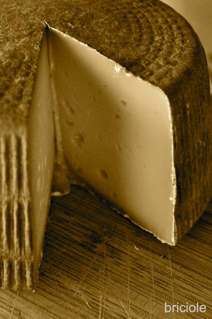 canestrato cheese