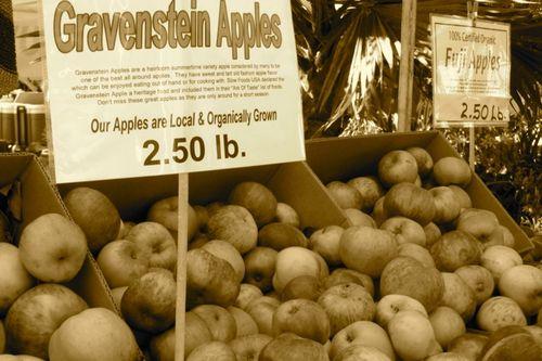 gravenstein apples California