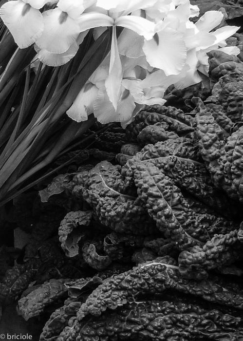 white irises and Tuscan kale
