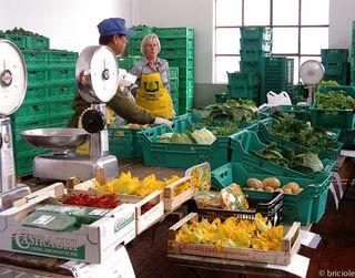 farmers' market Milan
