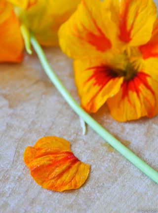 nasturtiums on kneading board