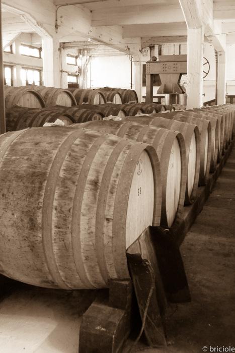 wine barrels EOS Karlovasi