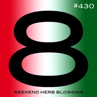 Whb430