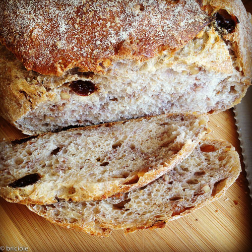 IMG_1664 / walnut raisin sourdough bread