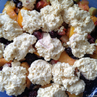 IMG_1729 / peach berry and rhubarb cobbler