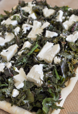 savory tart with kale and crescenza cheese