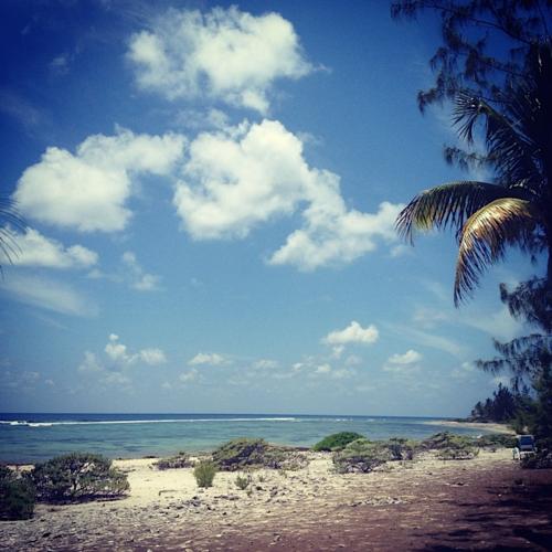 IMG_1854 / Pirates Point Beach, Little Cayman (BWI)