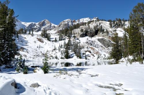 DSC_0265-1 / Grand Teton National Park
