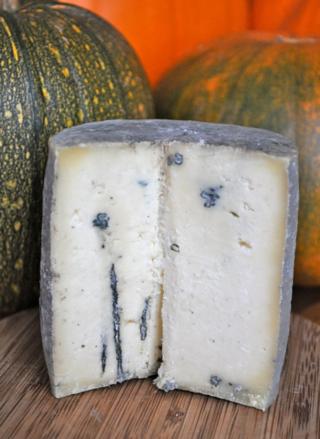semi-hard blue-veined cheese