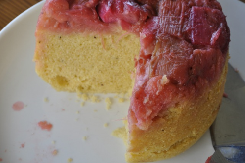 rhubarb steamed pudding