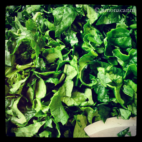 chopped fresh spinach leaves / IMG_2960