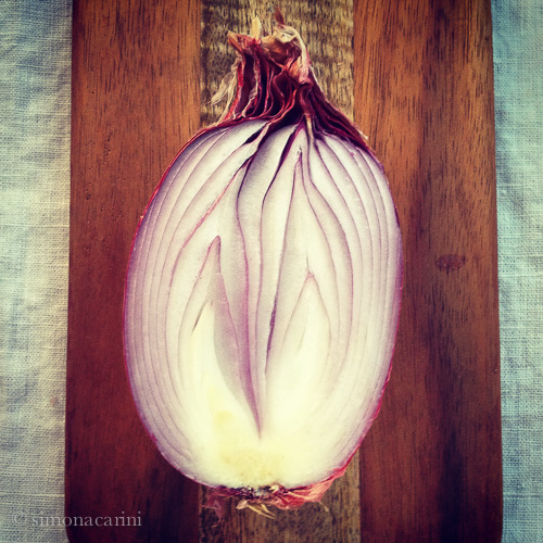 red onion / IMG_3824