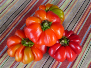 Round of Hungary peppers, pimento peppers
