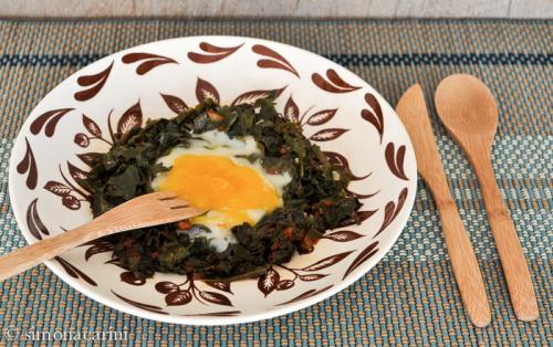 eggs nested in leafy green vegetables / DSC_7998