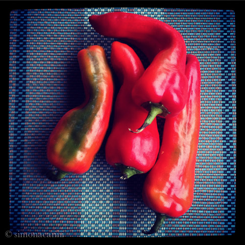 sweet peppers / IMG_4982