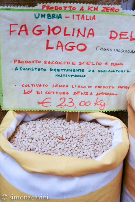 fagiolina del Lago Trasimeno / Lake Trasimeno cowpea /P1030521 (1)