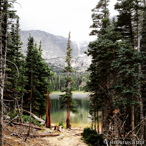 Odessa Lake, Rocky Mountain National Park / IMG_3615