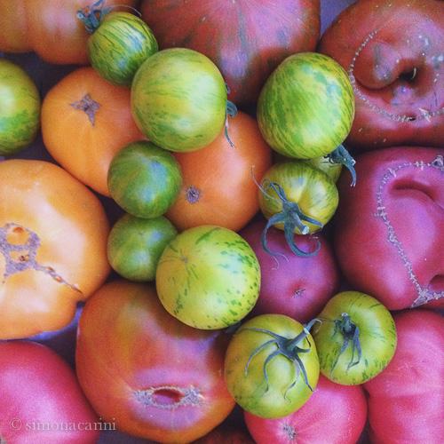 heirloom tomatoes / IMG_4875