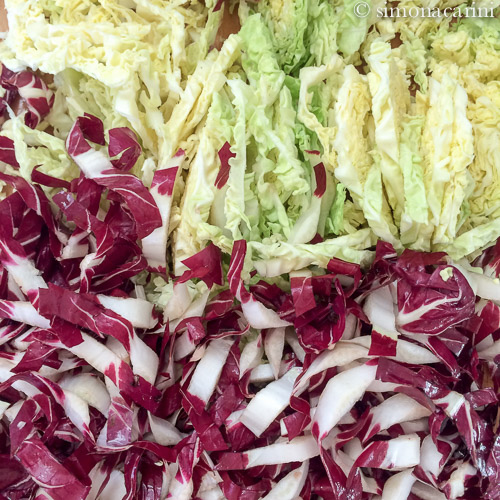 savoy cabbage and radicchio di Treviso / IMG_0786