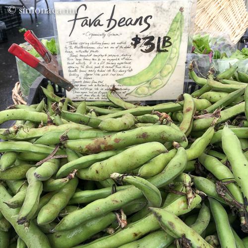 fava beans / IMG_1894
