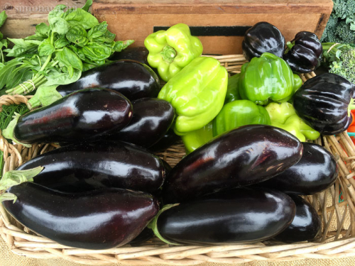 eggplant at farmers' market / IMG_3921